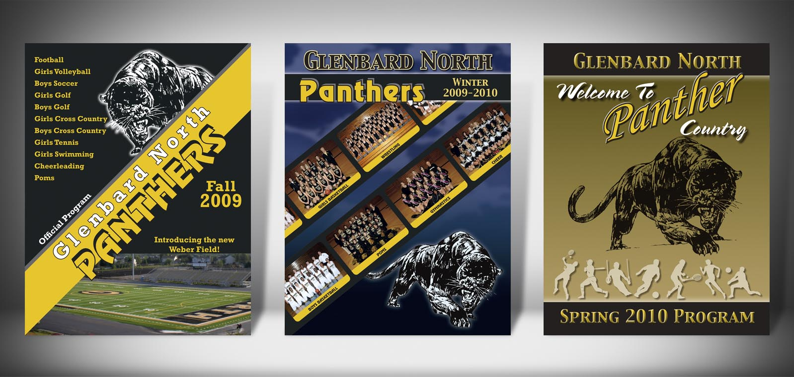 The Front Covers for the 2009-2010 Glenbard North High School Sports Program Graphic Design by Roselle Graphic Designer Controlled Color, Inc.