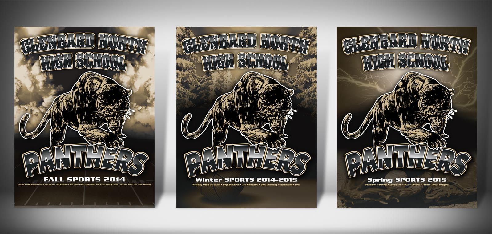The Front Covers for the 2014-2015 Glenbard North High School Sports Program Graphic Design by Roselle Graphic Designer Controlled Color, Inc.